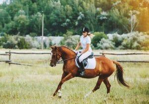 Curso Online de Monitor de Equitación