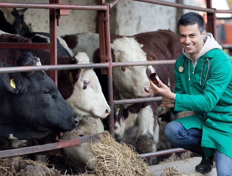 Curso Online de Auxiliar Veterinario de Animales de Granja